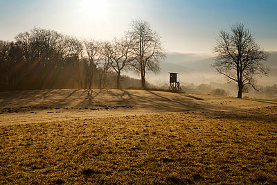 Germany, North Rhine-Westphalia, Bergisches Land, landscape with raised hide at morning mist - p300m980241 by noonland