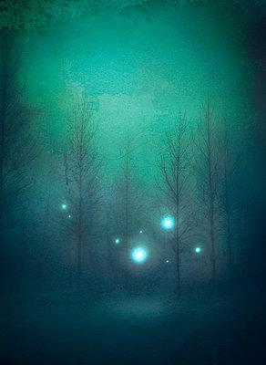 Magical - p984m702456 by Mark Owen
