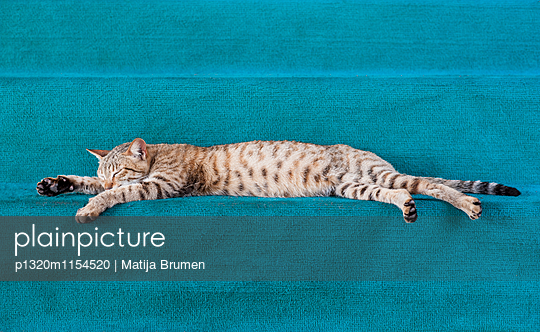 p1320m1154520 von Matija Brumen