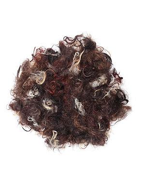 Verschiedenfarbige Haare - p1519m2064283 von Soany Guigand