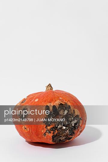Rotten pumpkin with painted eyes on an off-white background - p1423m2149798 von JUAN MOYANO