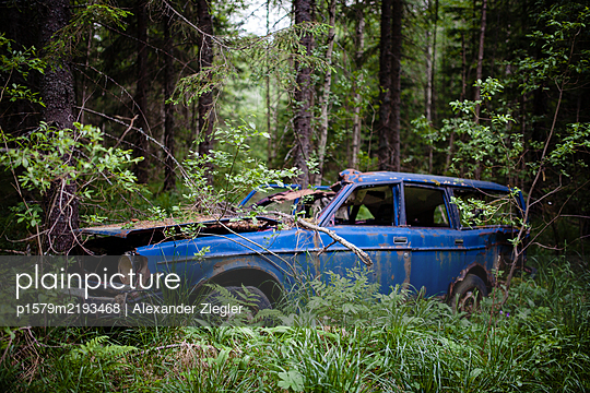 Car wreck in the forest - p1579m2193468 by Alexander Ziegler