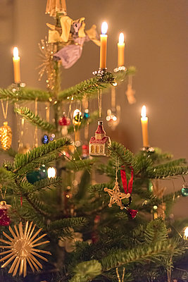 Christmas tree with burning bees wax candles - p1433m2126280 by Wolf Kettler