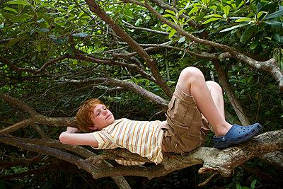 Caucasian boy relaxing in tree - p555m1419860 by Jeff Greenough