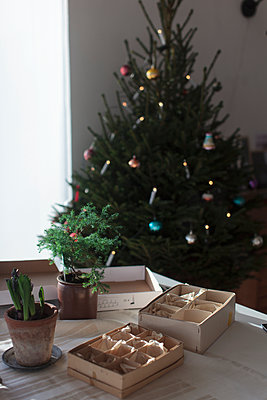 Boxes on table, Christmas tree on background - p312m1558235 by Christina Strehlow