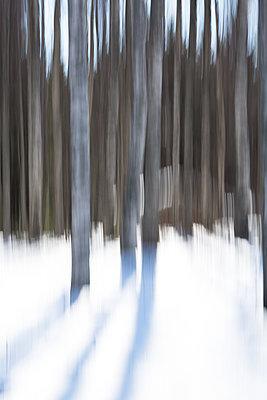 Blurred landscape - p1251m1158957 by Heikki Tabell