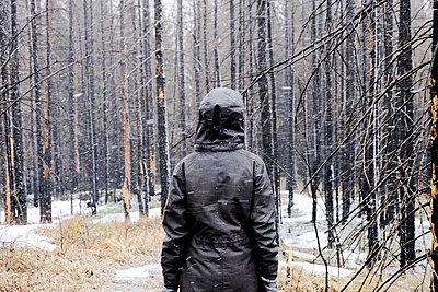 Woman standing in forest in winter, Ural, Sverdlovsk, Russia - p429m2068974 by Aliyev Alexei Sergeevich