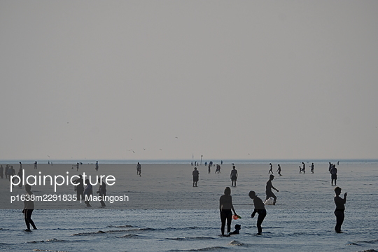 Tourists by the sea at low tide - p1638m2291835 by Macingosh