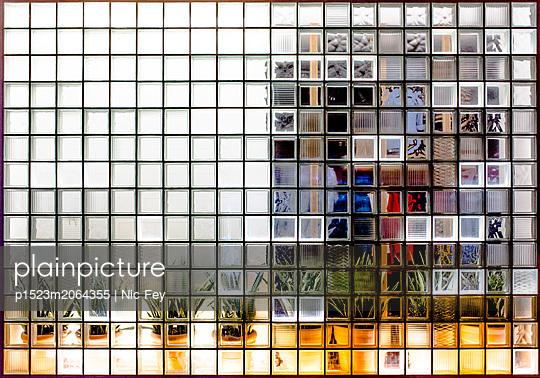 Plants behind glass blocks - p1523m2064355 by Nic Fey