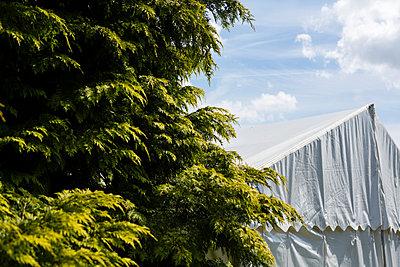 Zelt, Bäume und Himmel - p1057m1041407 von Stephen Shepherd