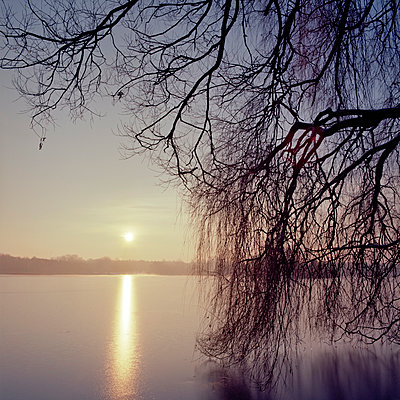 Frozen lake - p324m943336 by Alexander Sommer