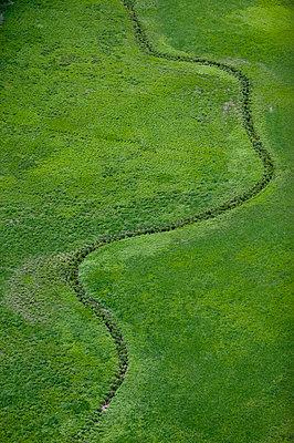 Wetlands, Narke, Sweden. - p5754147f by Roine Magnusson