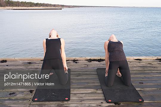 p312m1471865 von Viktor Holm