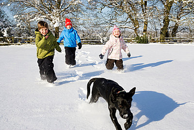 Children and dog running in the snow - p4299672f by Adie Bush