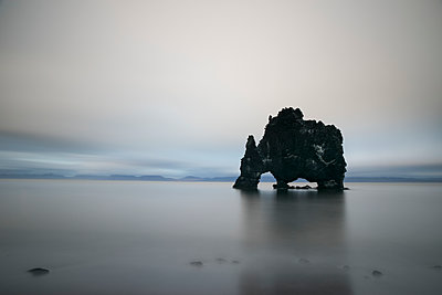 The sea stack known as Hvitserkur in Northern Iceland; Iceland - p442m1141513 by Robert Postma