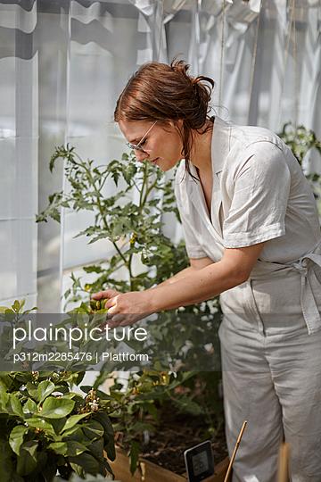 Woman taking care of plants - p312m2285476 by Plattform