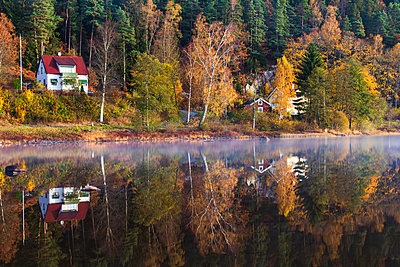 Autumn forest reflecting in lake - p312m2118889 by Johner