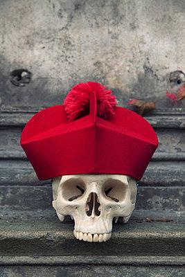 Totenkopf mit Kardinalshut - p3300301 von Harald Braun