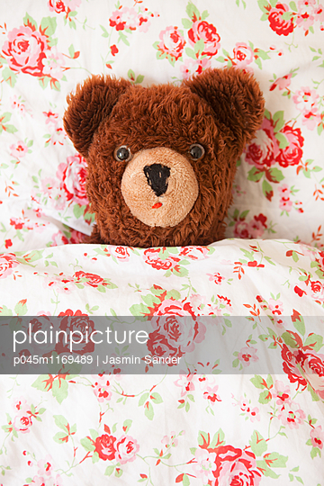 Teddy ruht sich aus - p045m1169489 von Jasmin Sander