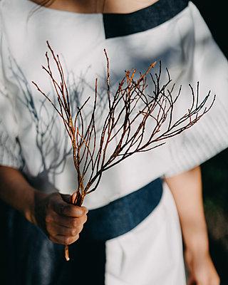 Frau hält einen Zweig in der Hand - p1184m1462626 von brabanski