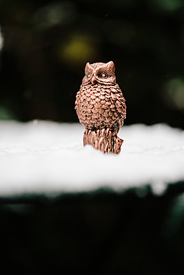 Small Owl in the snow - p1621m2231161 by Anke Doerschlen