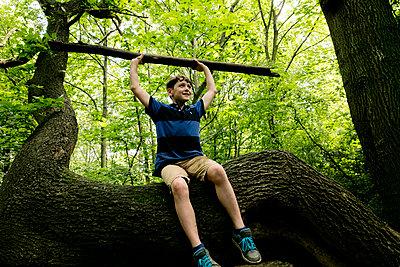 Junge hebt Ast im Wald - p1212m1152988 von harry + lidy
