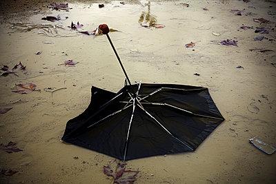 Destroyed umbrella - p631m913004 by Franck Beloncle