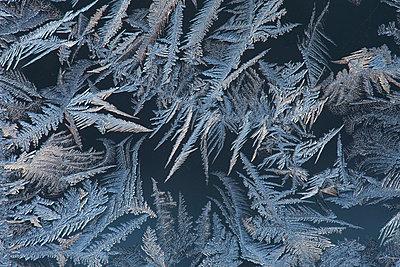 Eisblumen am Fenster - p235m904265 von KuS