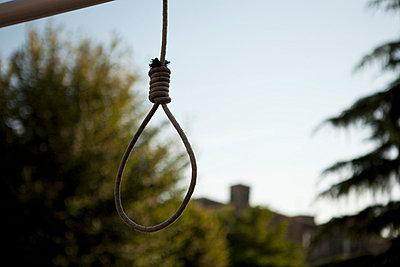 Hanging - p5910089 by Celine Marchbank