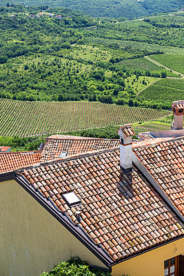 View into the landscape from rooftops in Motvun, Croatia. - p855m1127726 by Matthew Worsnick