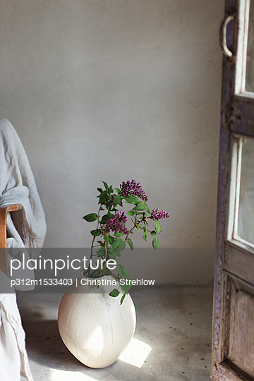 Flowers in vase - p312m1533403 by Christina Strehlow