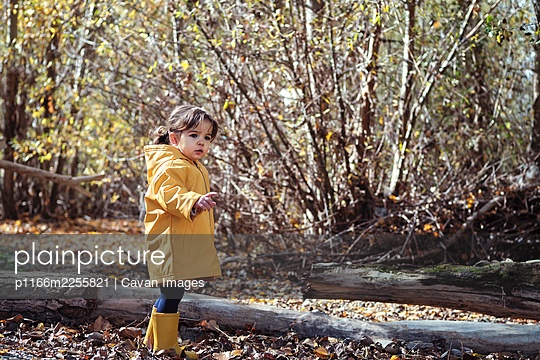 A 2 year old girl in a yellow raincoat in nature - p1166m2255821 by Cavan Images