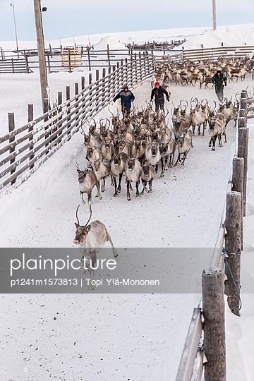 p1241m1573813 von Topi Ylä-Mononen
