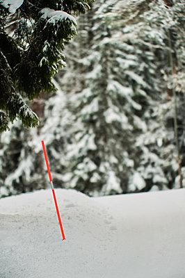 Road marking on snowy dirt road - p1418m1572407 by Jan Håkan Dahlström