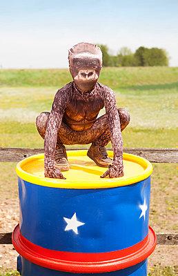 Gorilla - p045m1159463 von Jasmin Sander