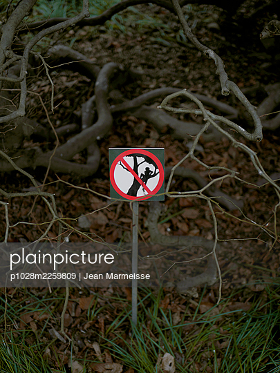 Do not climb trees - p1028m2259809 by Jean Marmeisse