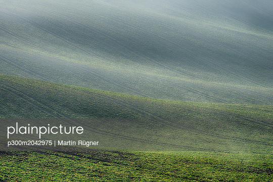 Rolling field landscape in early spring - p300m2042975 von Martin Rügner