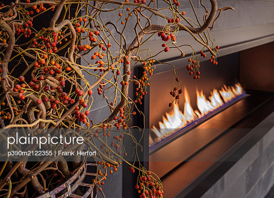 Bioethanol fireplace in living room - p390m2122355 by Frank Herfort
