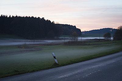 Foggy Landscape - p1149m1074281 by Yvonne Röder