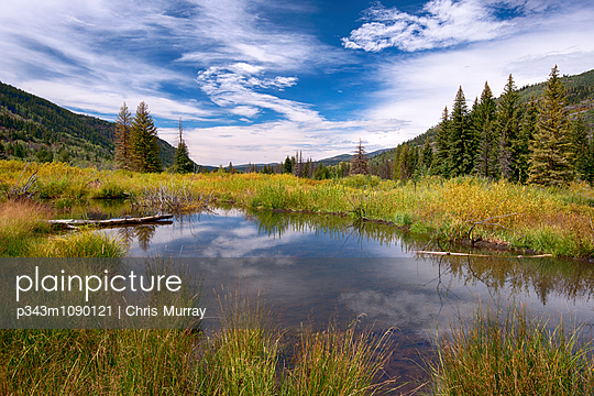 p343m1090121 von Chris Murray