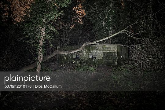 p378m2010178 von Dibs McCallum