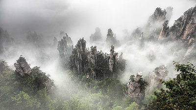 Tianzi mountain in the mist at sunrise, Zhangjiajie national forest park, Hunan, China - p651m2152377 by Marco Gaiotti
