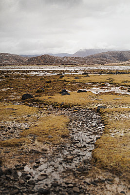 Moorlands at Scottish highlands - p1477m2039000 by rainandsalt