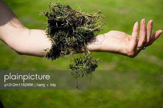 Rasenknäuel auf dem Arm - p1212m1152956 von harry + lidy