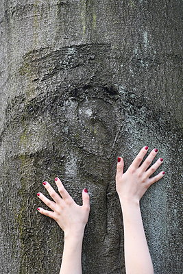 Woman hands touching tree trunk - p1229m2258929 by noa-mar