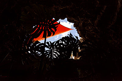Exotic plants and sun sail seen through hole of cave - p1598m2164428 by zweiff Florian Bier