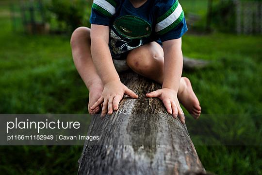 p1166m1182949 von Cavan Images