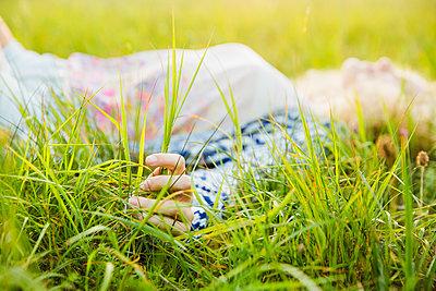 In der Natur - p904m1170866 von Stefanie Päffgen