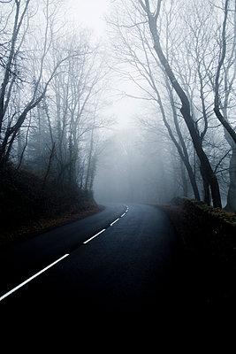 Mysty road - p445m1119667 by Marie Docher