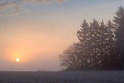 The sunrise in the winter - p5750143f by Stefan Ortenblad